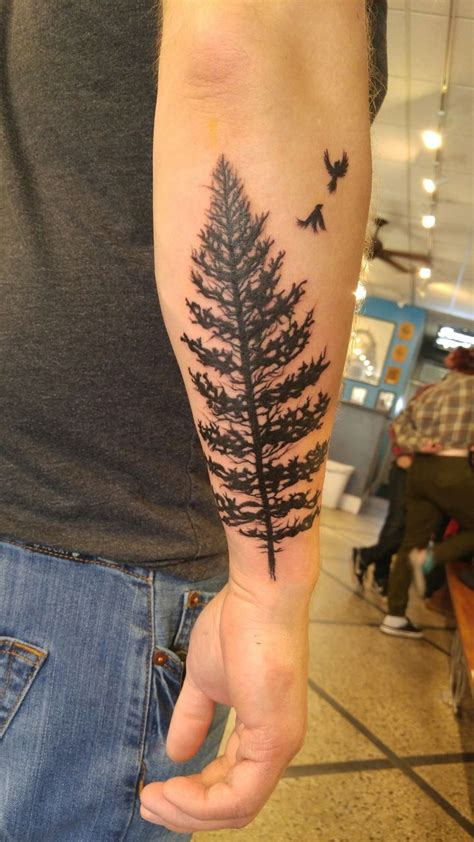 22 photos of mystical pine best 25 pine ideas on pine tree