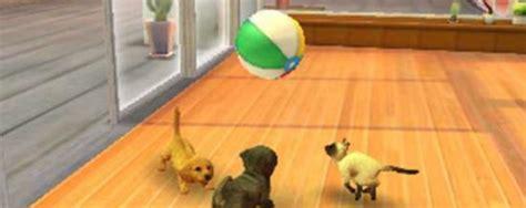 imagenes que se mueven gatos fondos de pantalla que se mueven de verdad de animales