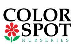 color spot nurseries