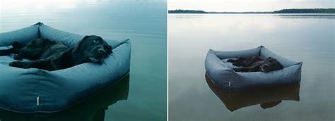 floating dog bed floating dog bed home decorating trends homedit