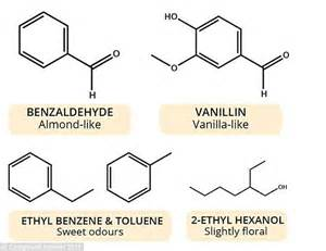 Decoding Odours One Molecule At A Time by Infographic Reveals Complex Chemistry Comforting