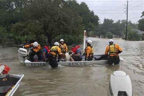 houston adoption nebraska task helps rescue 350 in houston fema asks lfr to explore sending more