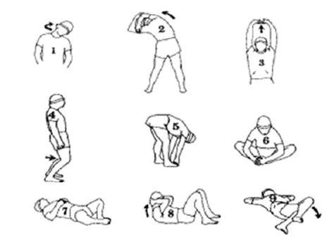 Ejercicios De Educacion Fisica Newhairstylesformen2014 Com | ejercicios de educacion fisica newhairstylesformen2014 com