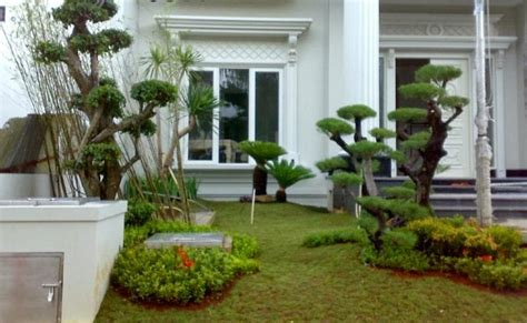 Jual Lu Hias Rumah Minimalis tukang taman profesional jual tanaman hias murah jasa