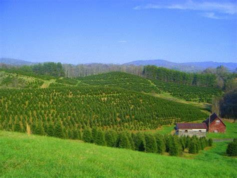 1000 images about blue ridge mountains on pinterest