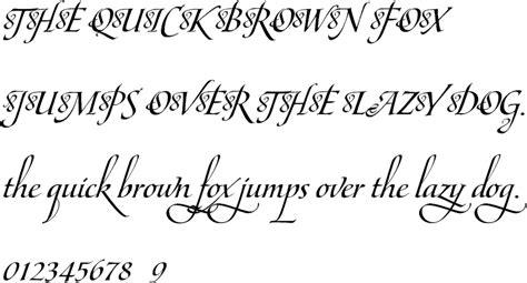 maestro c bold premium font buy and download