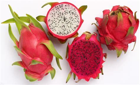 dragon fruit benefits of the super fruit pitaya facts
