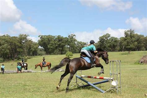 endeavour park equestrian centre horse riding classes