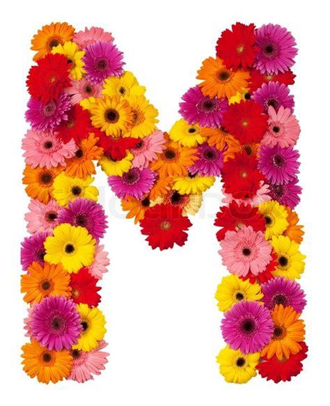 flower design m letter m flower alphabet isolated on white background