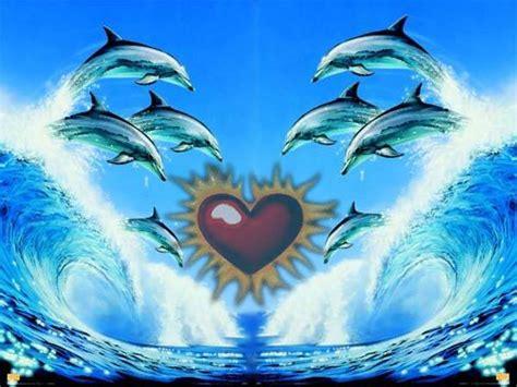 imagenes de amor animadas de delfines im 225 genes de delfines enamorados im 225 genes de enamorados