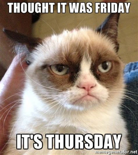 Grumpy Cat Friday Meme - thought it was friday it s thursday grumpy cat 2 meme