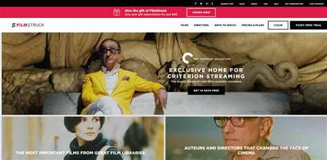 le film obsessed en streaming streaming with cinephiles finding quality films in a