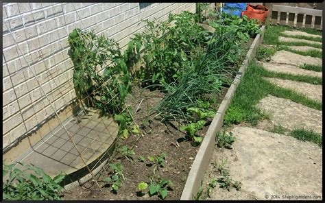 vegetable beds may vegetable garden stephi gardens