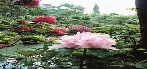 mondo giardino lago di garda tutta la natura mondo in un giardino