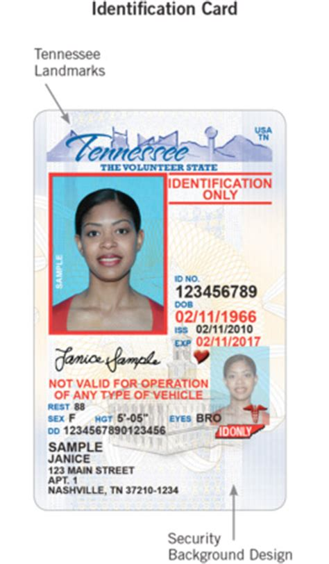 tennessee id card template best photos of tennessee id template id drivers