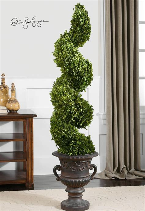 cheap trees beautiful 5ft spiral topiary preserved boxwood i want