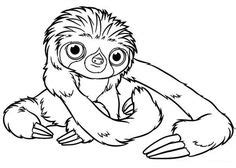 printable penguin coloring pages  kids coloring