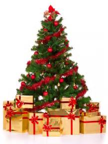 christmas tree tips consett magazine consett news for