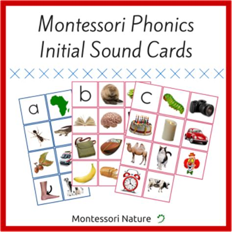 Printable Montessori Cards | montessori printables