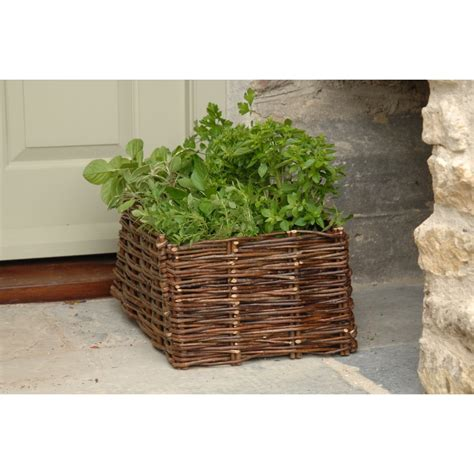 buy burgon wicker herb planter from the