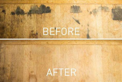 Obat Pembasmi Jamur Kulit panduan mencegah jamur pada furniture