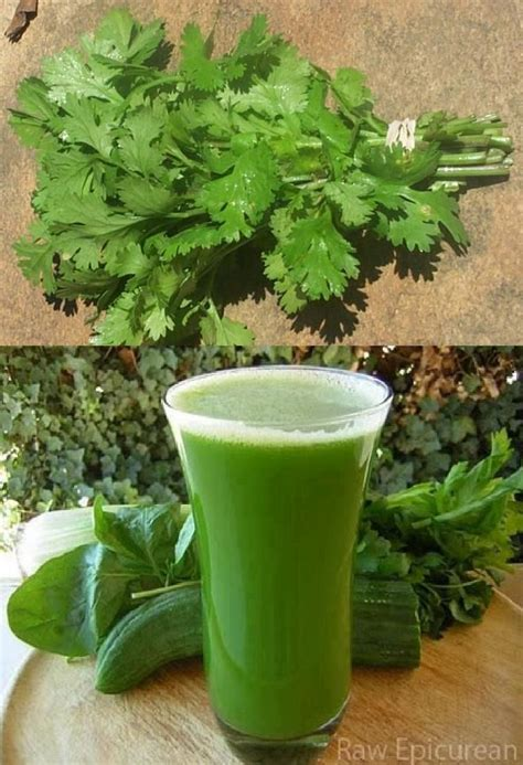 How To Use Cilantro For Detox by Clean Your Kidneys In 1 00 Take A Bunch Of Parsley Or