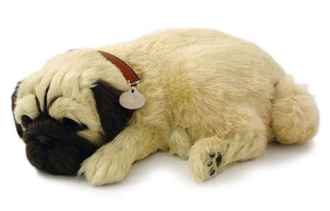 Kaos Kaki Hewan Peliharaan Anjing Kucing Lucu 1 boneka lucu yang bisa bernafas hidup ini indah