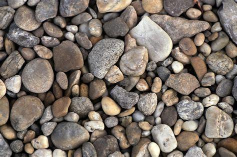 we scored free rocks the jealousy files