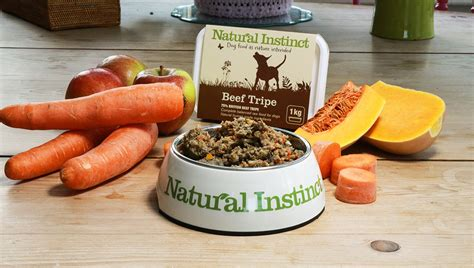 best organic food for puppies healthy foods for dogs food