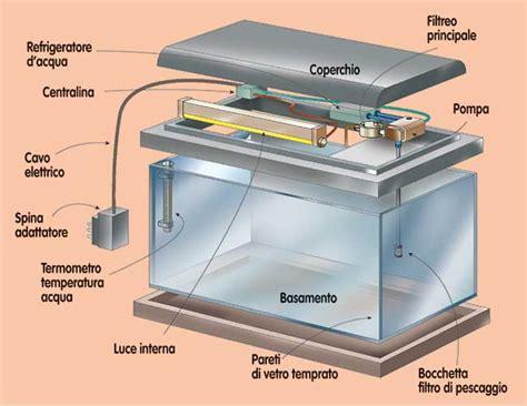 costruire vasca acquario acquario fai da te progetto gestione pulizia pesci e