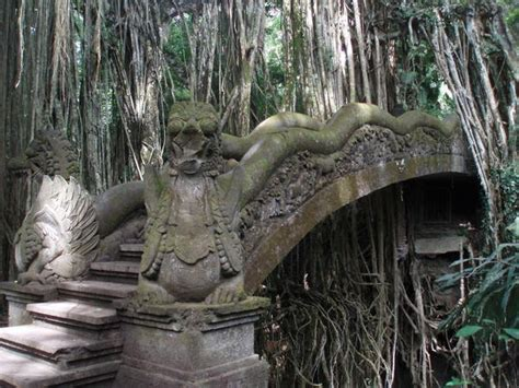 monkey forest dragon bridge photo