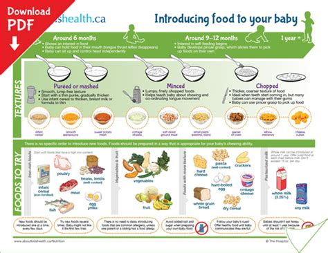 the healthy baby guidebook a guide to health awareness food education for you and your baby ideal for ages newborn 12 months books for your newborn baby is the greatest gift that you