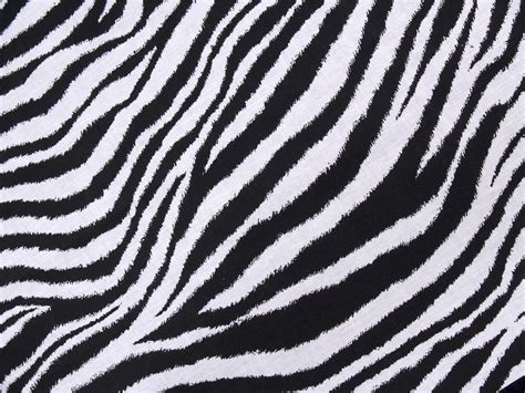 zebra pattern unique you ll love these mystically wild safari theme decorating