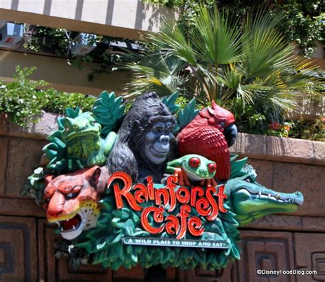 rainforest cafe light up cup review rainforest cafe a la disney the disney food blog