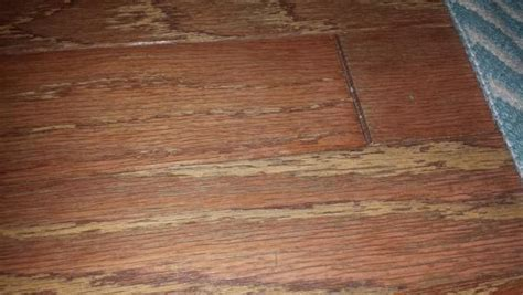 Restoring worn engineered flooring   DoItYourself.com