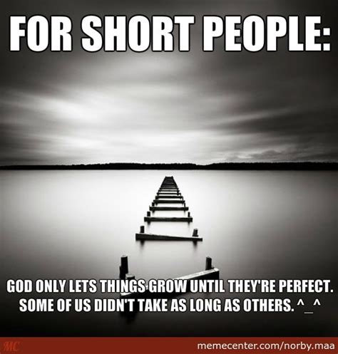 What Is Meme Short For - for short people by norby maa meme center