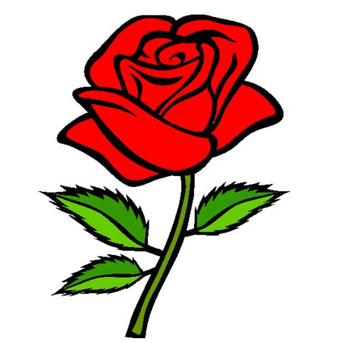 rosa clipart ros clipart clipground
