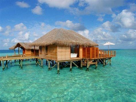 bungalow overwater in fiji islands yfgt bungalow fiji places i want to go pinterest