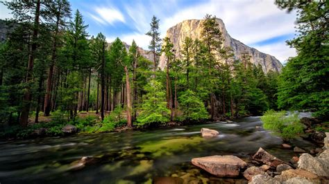 wallpaper river water rocks trees landscape mountain river merced clear mountain water basin
