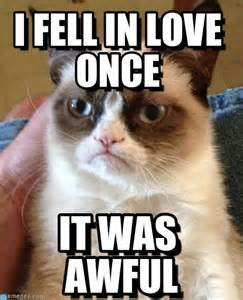 Grumpy Cat Meme Love - grumpy cat meme love