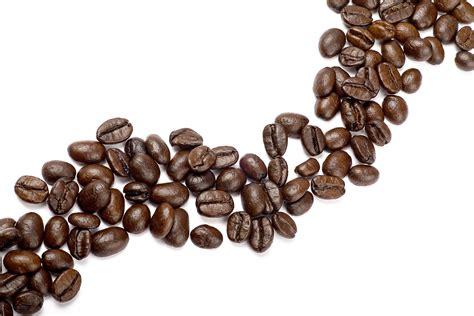 Coffee Beans coffee bean driverlayer search engine