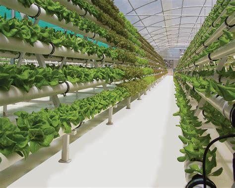 GrowFloor? Vinyl Flooring for Nurseries and Greenhouses