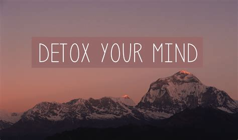 How To Detox Your Brain From by Den Kopf Bekommen Amazingy Magazine