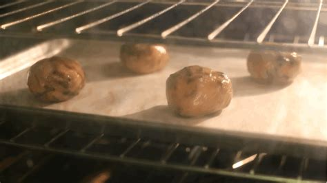 cookie baking gif find share on giphy