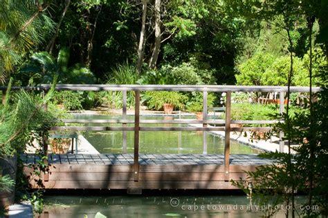 Stellenbosch Botanical Gardens Vs Elgin Open Gardens Stellenbosch Botanical Gardens