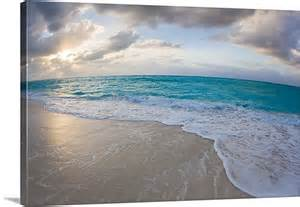 Tropical Wall Mural providenciales island turks and caicos islands wall art