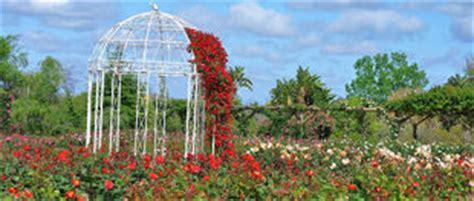 Australian Inland Botanic Gardens Mildura Attractions Travel Accommodation Visitor Guide