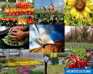 resume horticulture jobs ebook database