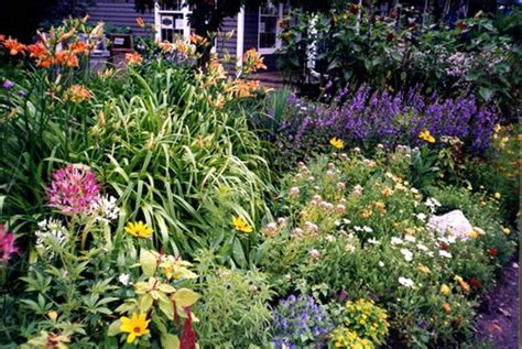 Enjoying The Beautiful Perennial Flowers In Your Frontyard Garden Flowers Perennials