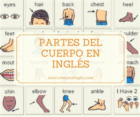imagenes y nombres de las partes del cuerpo aprender las partes del cuerpo con canciones en ingl 233 s crecer en ingl 233 s